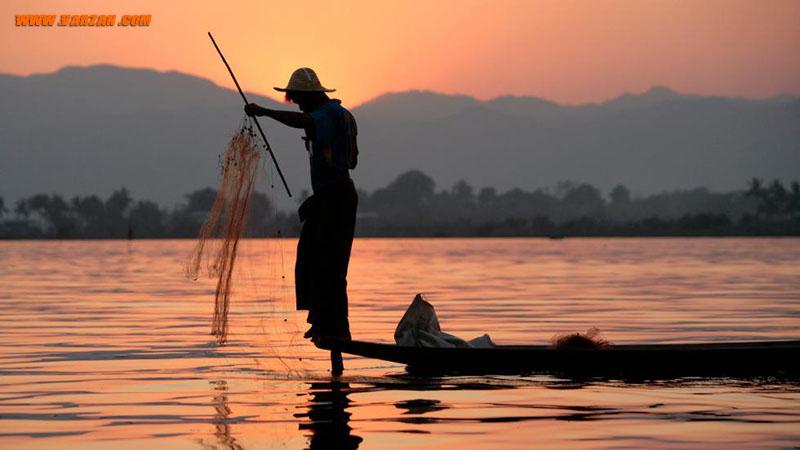 یک ماهیگیر میانماری از تور خود برای گرفتن ماهی استفاده می کند