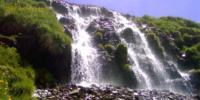 چشمه نرگس توچال