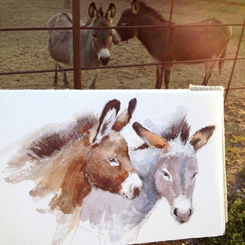 Donkeys-sketch