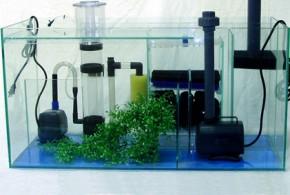 سیستم تصفیه آب آکواریوم