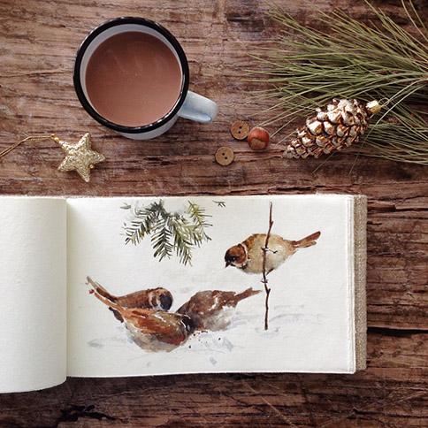 Sparrows-sketch