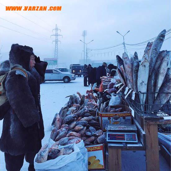 پسری در حال نگاه به ماهی های یخ زده و خرگوشی در بازار خیابان کشاورزی در یاکوتسک