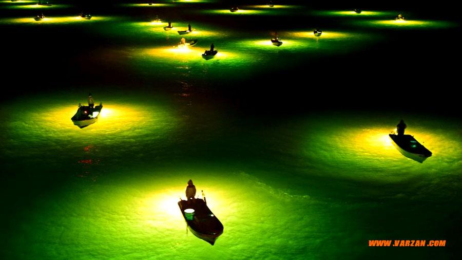 ماهیگیر شب، ژاپن
