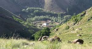 قصر ناصری
